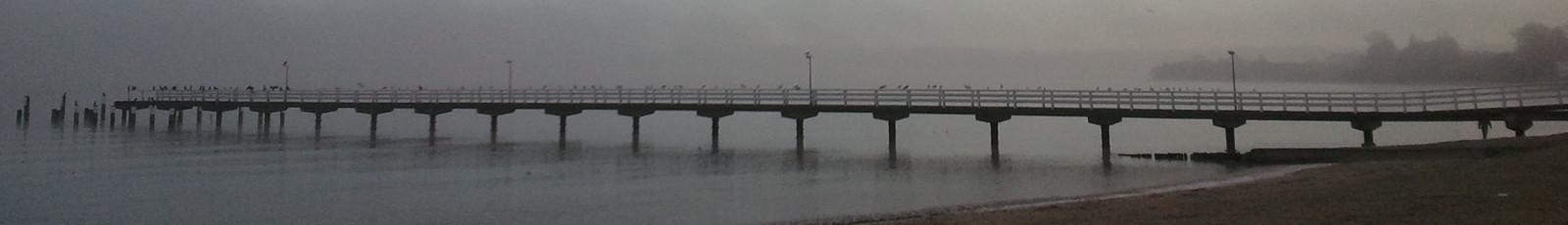 cropped-Seebrücke-bei-Nebel.jpg